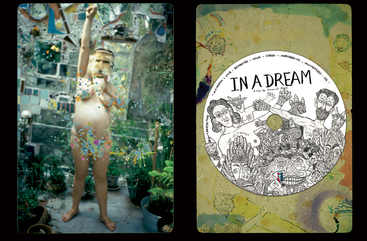 In A Dream - DVD Packaging, disc & interior